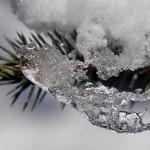 Liegt am Polarkreis eigentlich Schnee?